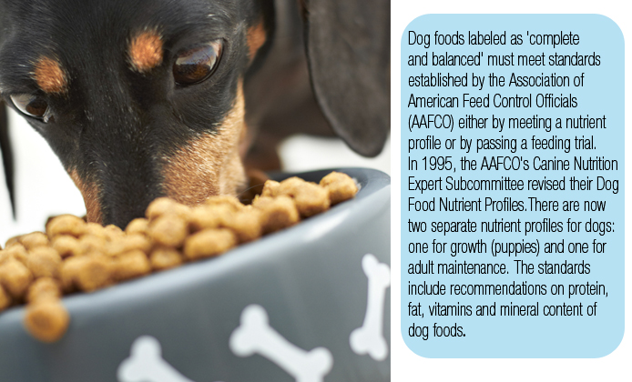 Photo of dog eating dog food with information about AAFCO nutrient profiles