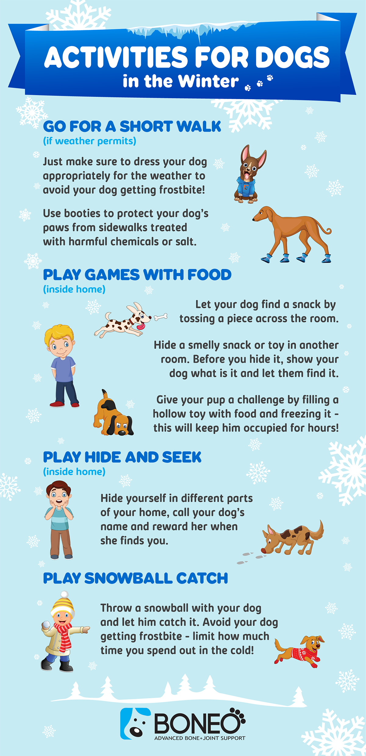 Winter Activities for Dogs Infographic