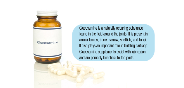 Can Dogs Have Glucosamine Supplements