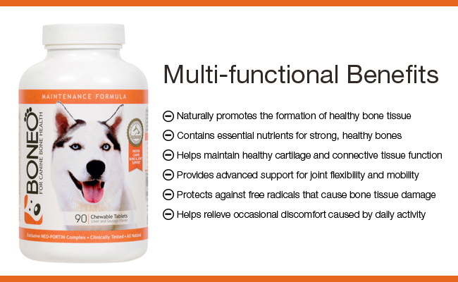 boneo canine benefits