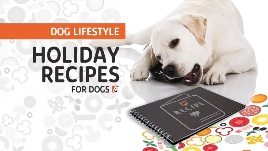 Holiday Recipes for Dogs